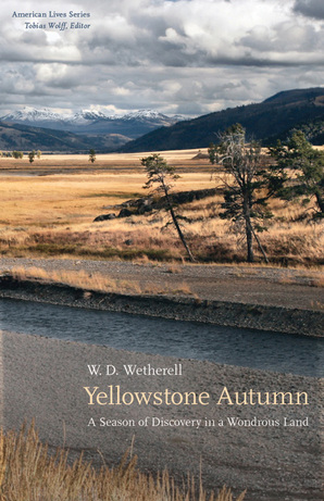 Yellowstone Autumn